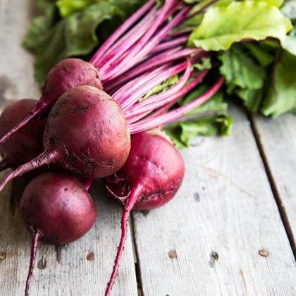Řepa salátová Pablo F1 - Beta vulgaris - prodej semen - 50 ks