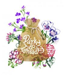 Semínka pro rozkvetlá okna - Vánoční balíček s dárkovým balením zdarma
