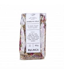 Dobře po jídle - prodej bylinných čajů - 60 g